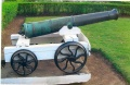 0066-cannon-at-maymyo-forestry-1.jpg